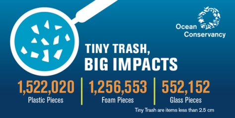 tiny-trash-infographic